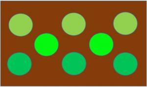 上手なグリーンの配色例
