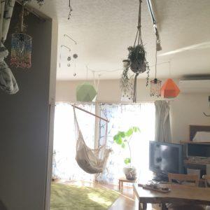 吊るして飾る植物
