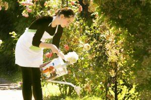 花の水やりをする女性