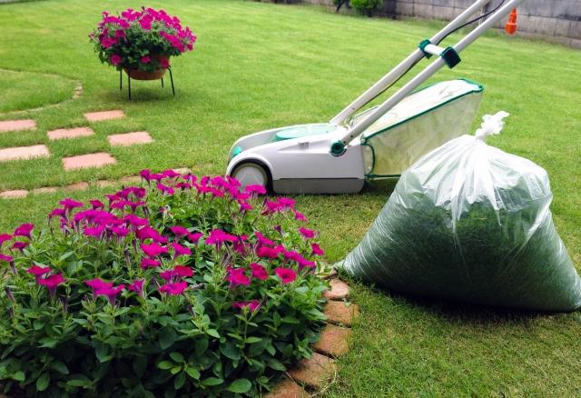 庭と花壇と芝刈り機