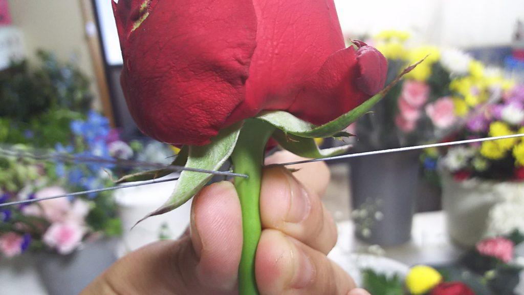 クロスメソード 赤バラ